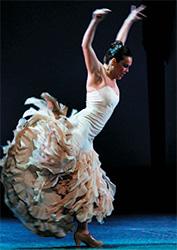 Partenaires Arte Flamenco