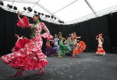 Scène amateurs Alma del Sur