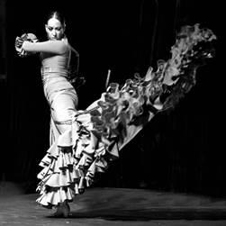 2016 arte flamenco