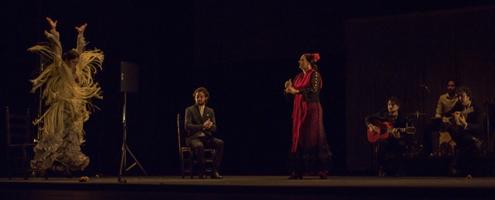Gala Flamenca © Carole Edrich