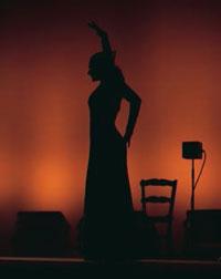 Cliché d&aposun photographe d&aposArte Flamenco