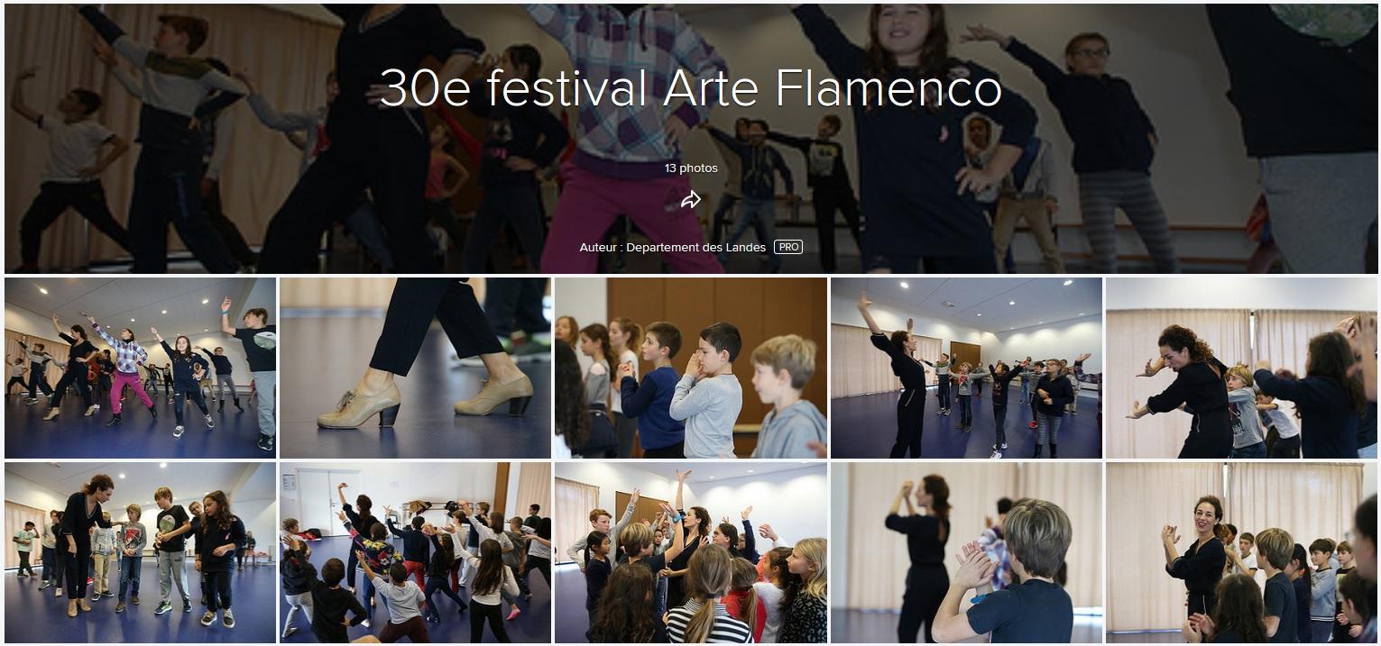 Flickr Arte Flamenco