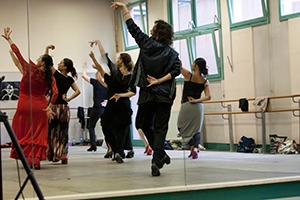 Réserver un stage Arte Flamenco