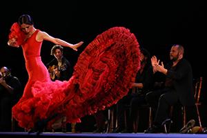 Réserver un spectacle Arte Flamenco